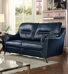 Furniture of America CM6008BLLV