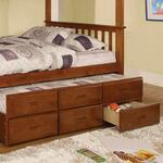 Furniture of America CMBK458CTROAK