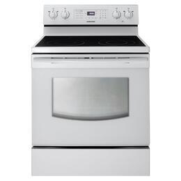 Samsung Appliance FER300SW