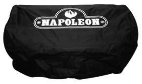 Napoleon 63675