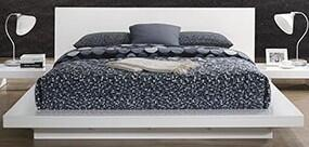 Furniture of America CM7540WHQBED