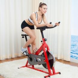 Sunny Health and Fitness SFB1001