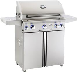 American Outdoor Grill 30NCL00SPR
