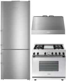 "4-Piece Kitchen Package with CBS1660 30""  Bottom Freezer Refrigerator, RN301GPSS 30"" Freestanding Gas Range, CLAS30SS 30"" Wall Mount Convertible Hood, and DWPSS 24"" Dishwasher Door Panel in Stainless Steel"