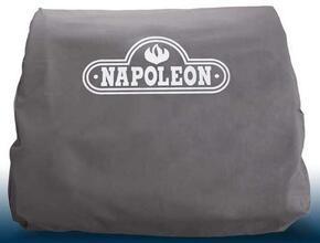 Napoleon 68666