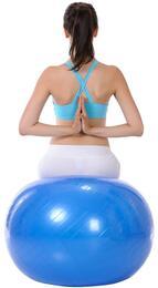 Sunny Health and Fitness NO057