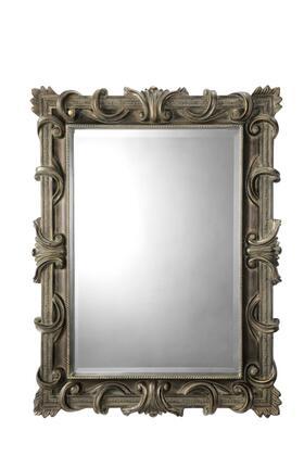 Stein World 64760  Rectangular Portrait Wall Mirror