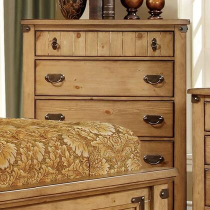 Furniture of America CM7449C Pioneer Series  Chest