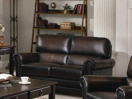 Coaster 502982 Leather Stationary with Wood Frame Loveseat