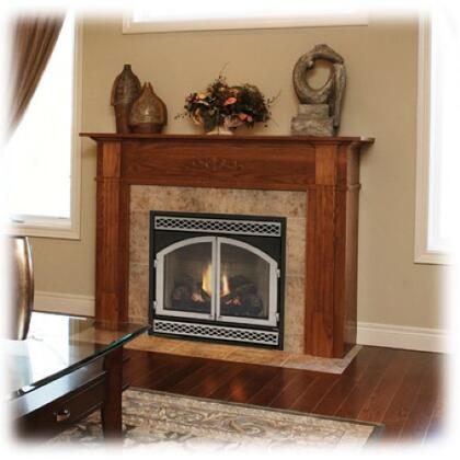 Monessen BDV500PVC  Direct Vent Liquid Propane Fireplace
