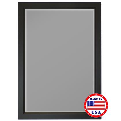 Hitchcock Butterfield 81350X 2nd Look Gallery Black Profile Edge Framed Wall Mirror