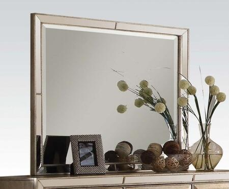 Acme Furniture 21004 Voeville Series Square Portrait Dresser Mirror