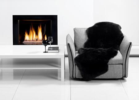 Black in Living Room