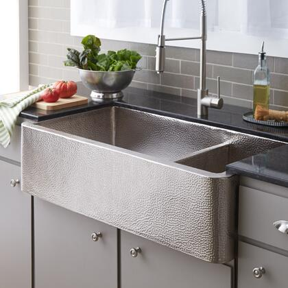 Native Trails CPK574 Brushed Kitchen Sink