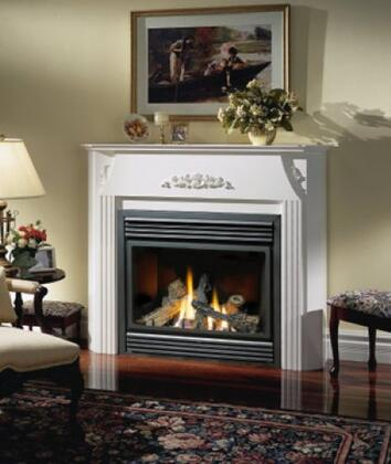 Napoleon BGD36NTR  Direct Vent Natural Gas Fireplace