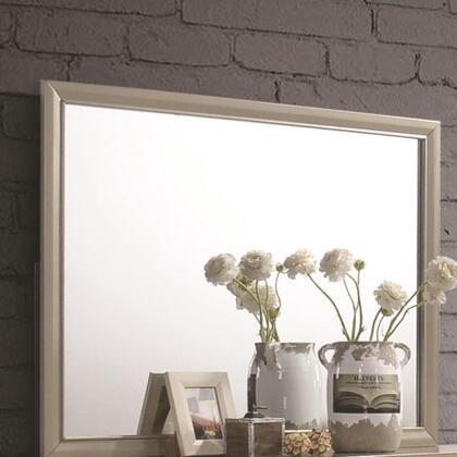 Coaster Brandi main image mirror