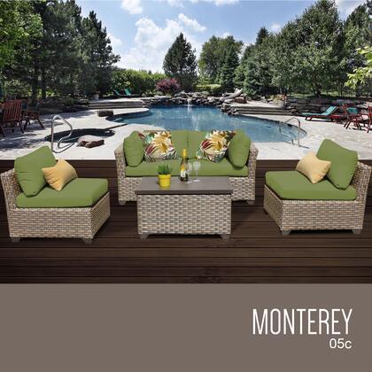 MONTEREY 05c CILANTRO