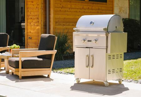 Grill with Cart