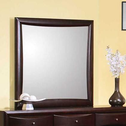 Coaster 200414 Phoenix Series Rectangular Portrait Dresser Mirror