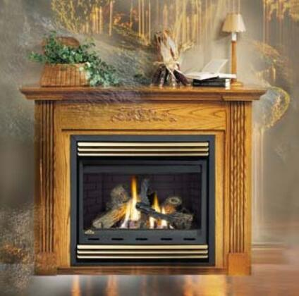 Napoleon BGNV36N  B-Vent Natural Gas Fireplace