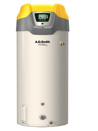 AO Smith BTH500